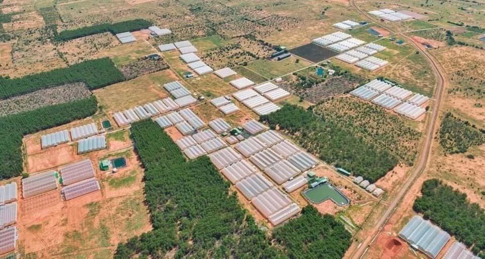 Hệ thống trang trại nhà màng tại Bình Thuận