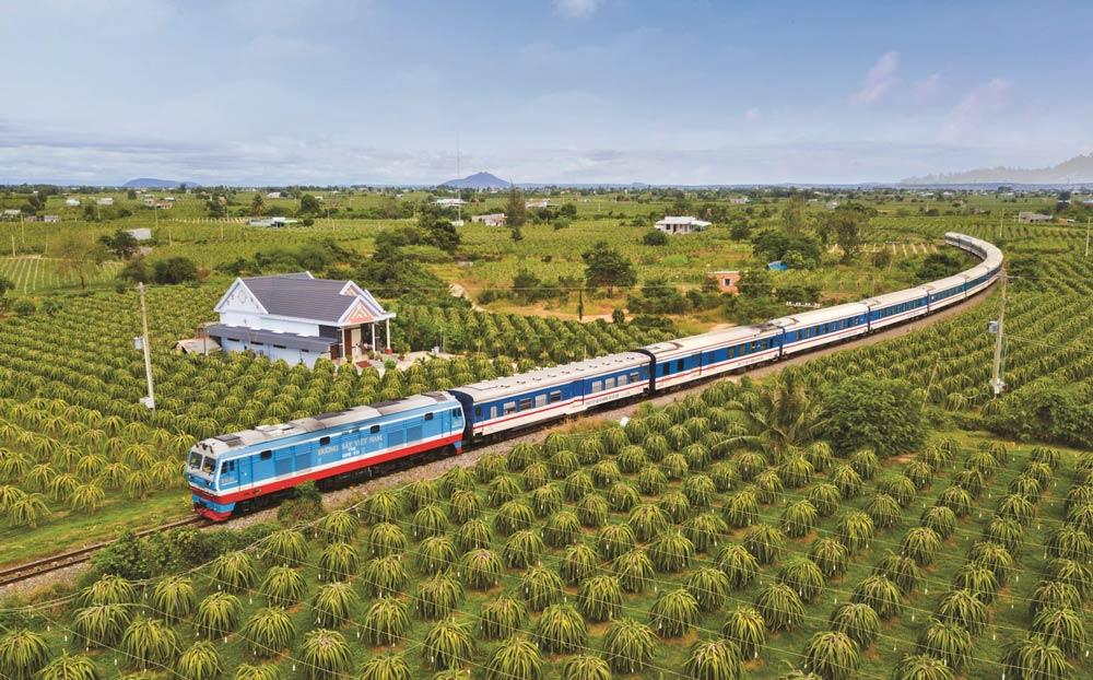 Tuyến đường sắt đi qua vườn thanh long Bình Thuận