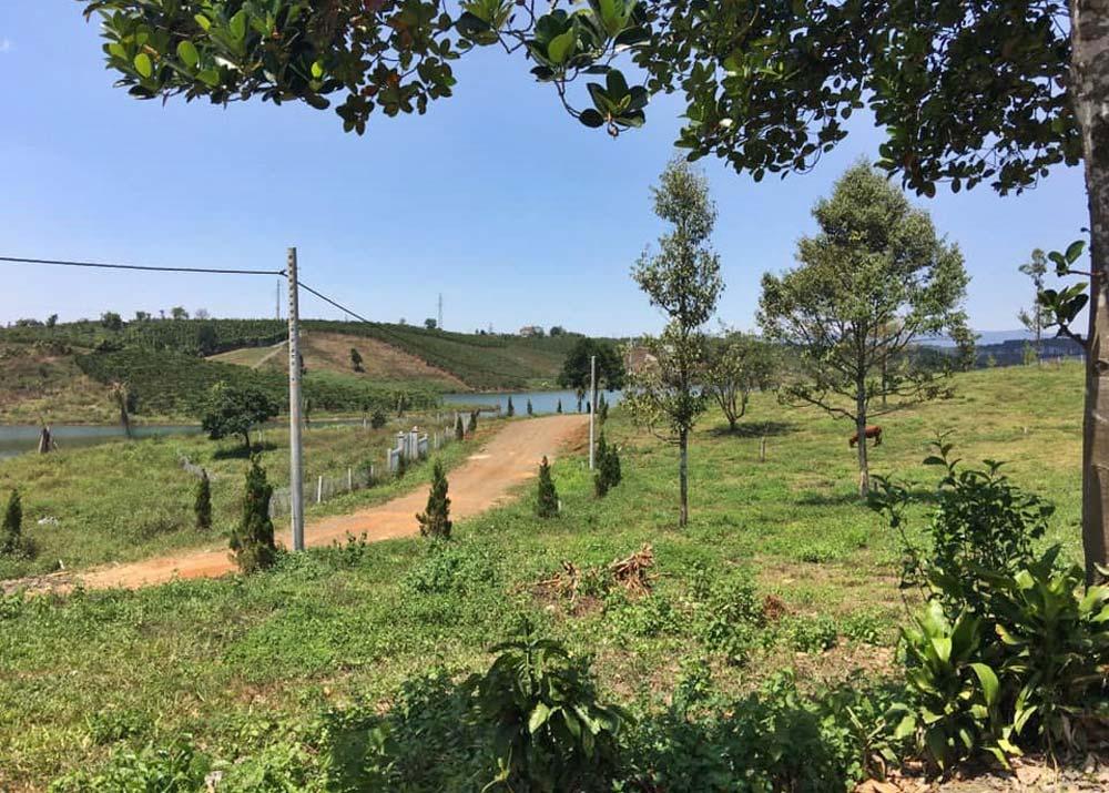 Đầu tư đất sào mẫu tại Bảo Lộc